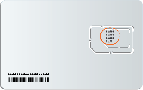 SIM card serial number